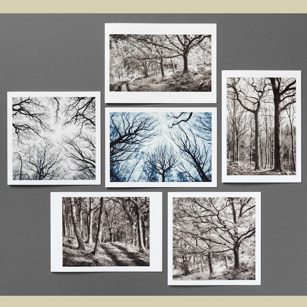 Greetings cards with woodland scenes